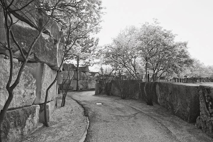 Indianapolis-Architecture-black-and-white-Zoo-path-sequel-wmiii.co-
