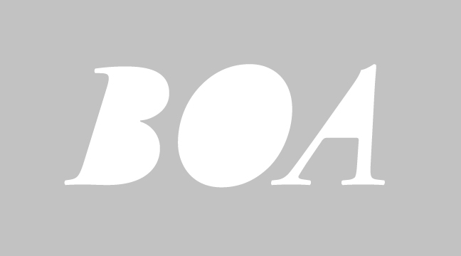 BOA - italic - letterform outline - wmiii.co