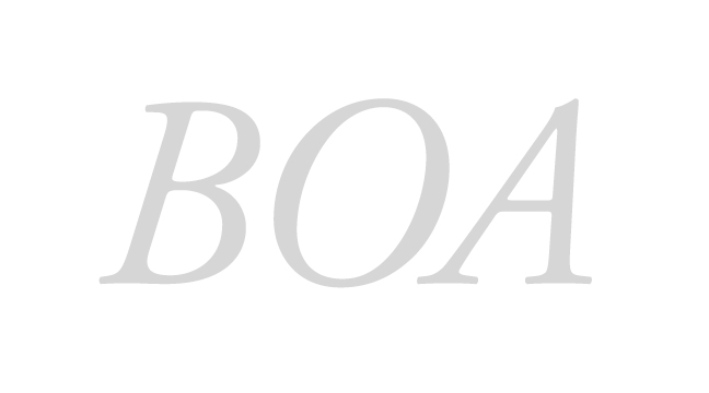 BOA - italic - letterforms - wmiii.co