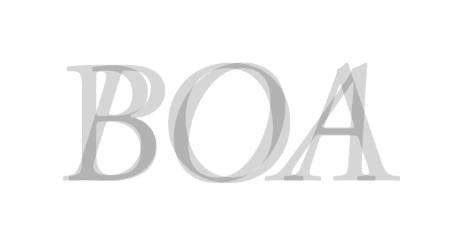 BOA - regular + italic - letterforms - wmiii.co