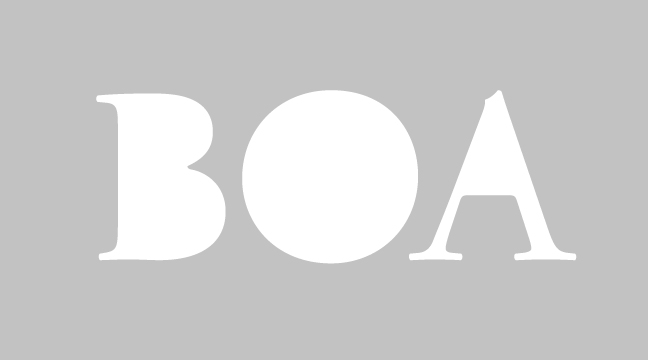 BOA - regular - letterform outline - wmiii.co