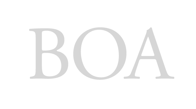 BOA - regular - letterforms - wmiii.co