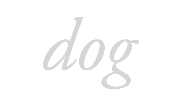 dog---italic---letterforms---wmiii